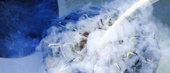 """Kinderwunsch-Studie: Große Offenheit gegenüber künstlicher Befruchtung und """"Social Freezing"""""""